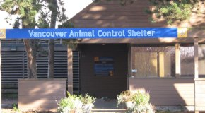 animal-control-centre-feature