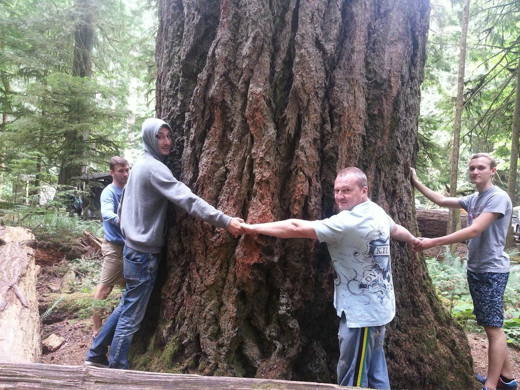 My father, brothers and I are trying to hug a tree. And it's not even the biggest one!