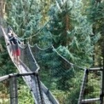 UBC Greenheart Canopy Walkway review