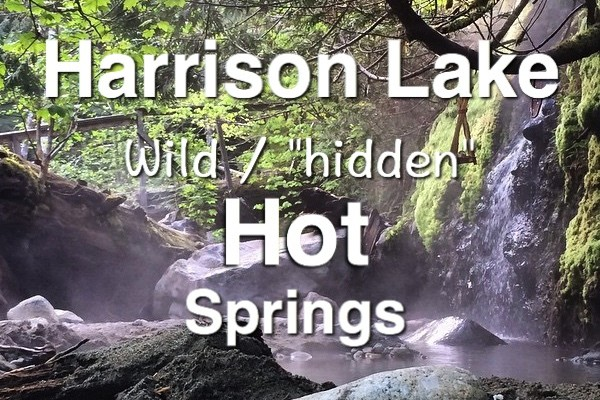 Harrison lake wild Hot Springs logo-1